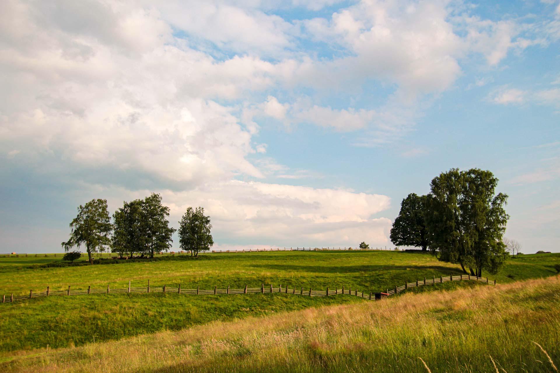 Sanft geschwungene Hügel und Wiesen bei Vysoka Lipa
