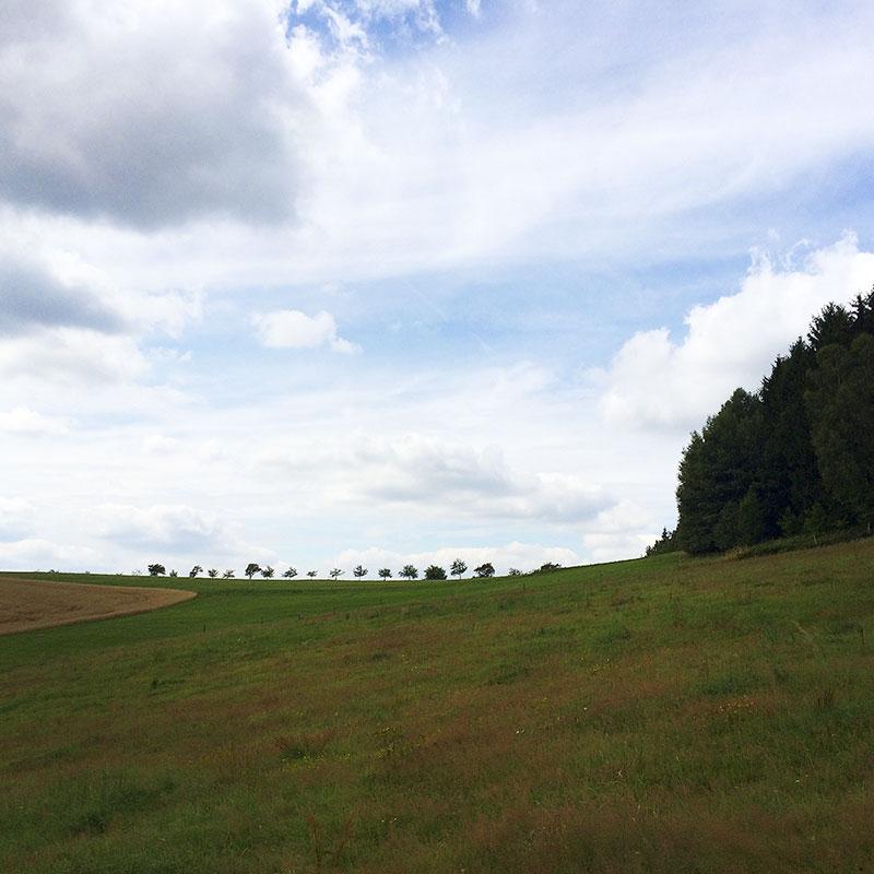 Auf dem Weg zum Weifberg überkommt mich das Gefühl, endlich wieder zu Hause zu sein.