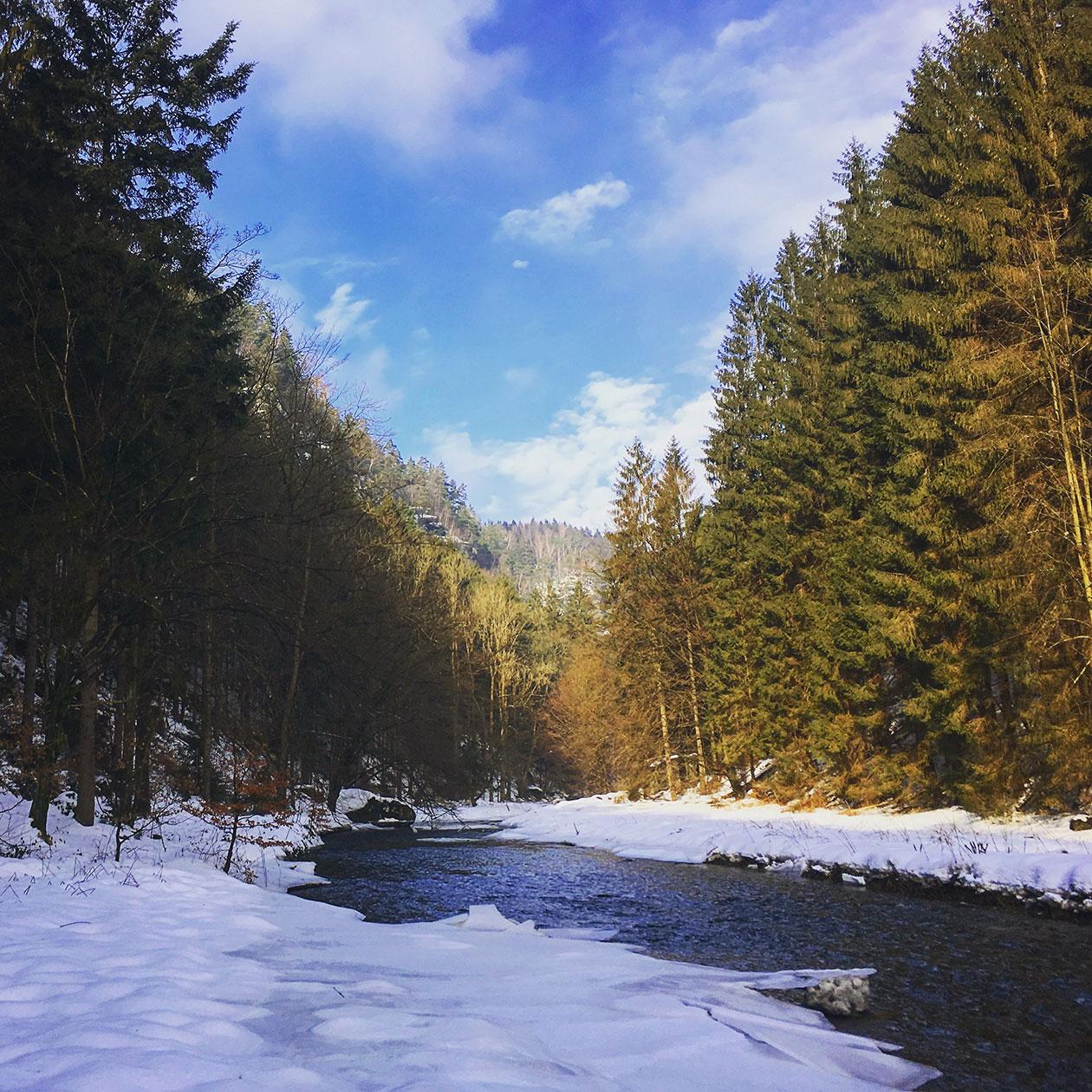 Der Schnee glitzert, sobald sich die Sonne durch den Morgennebel gekämpft hat