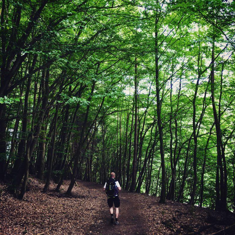 Durch tiefe Wälder wandern wir und sind stundenlang nur unter uns.
