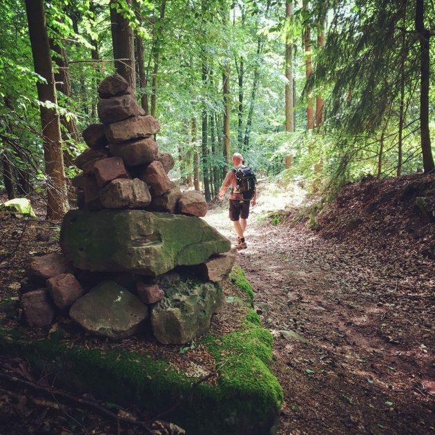 Entlang des Eselswegs führt uns der Weg weiter bis nach Freudenberg.