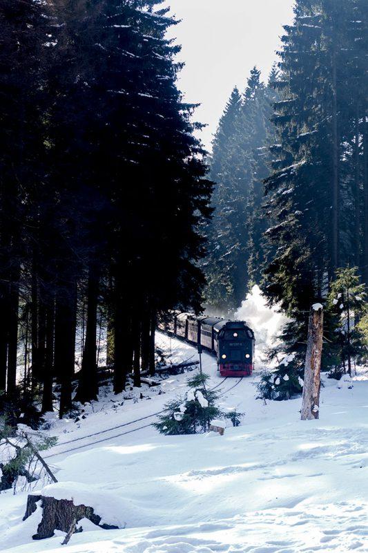 Quer durch die Alte Bobbahn kreuzt nicht zu überhören auch die Brockenbahn.
