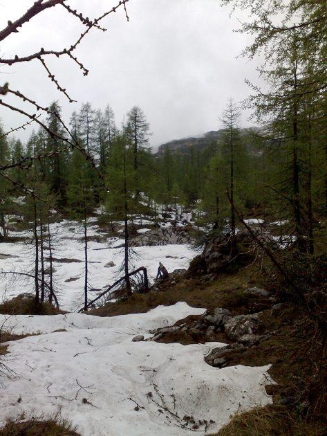 Einsame Wälder und wir mittendrin. Wie ins Grimms Märchen.