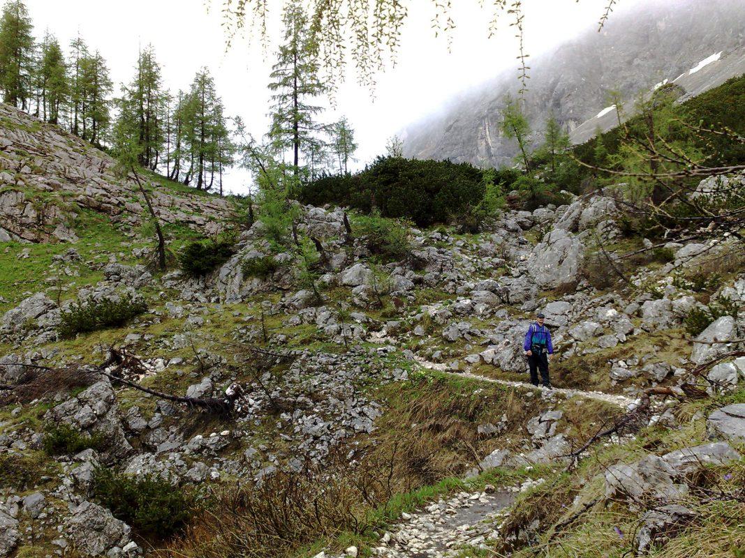 Hans und Hänsel auf dem Weg zum Knusperhäuschen. Naja, wohl eher zurück zur Triglavskih-Hütte.