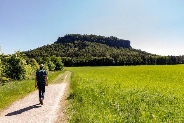 Über Feld- und Waldwege führt der Weg von der Elbe hinauf auf den Lilienstein