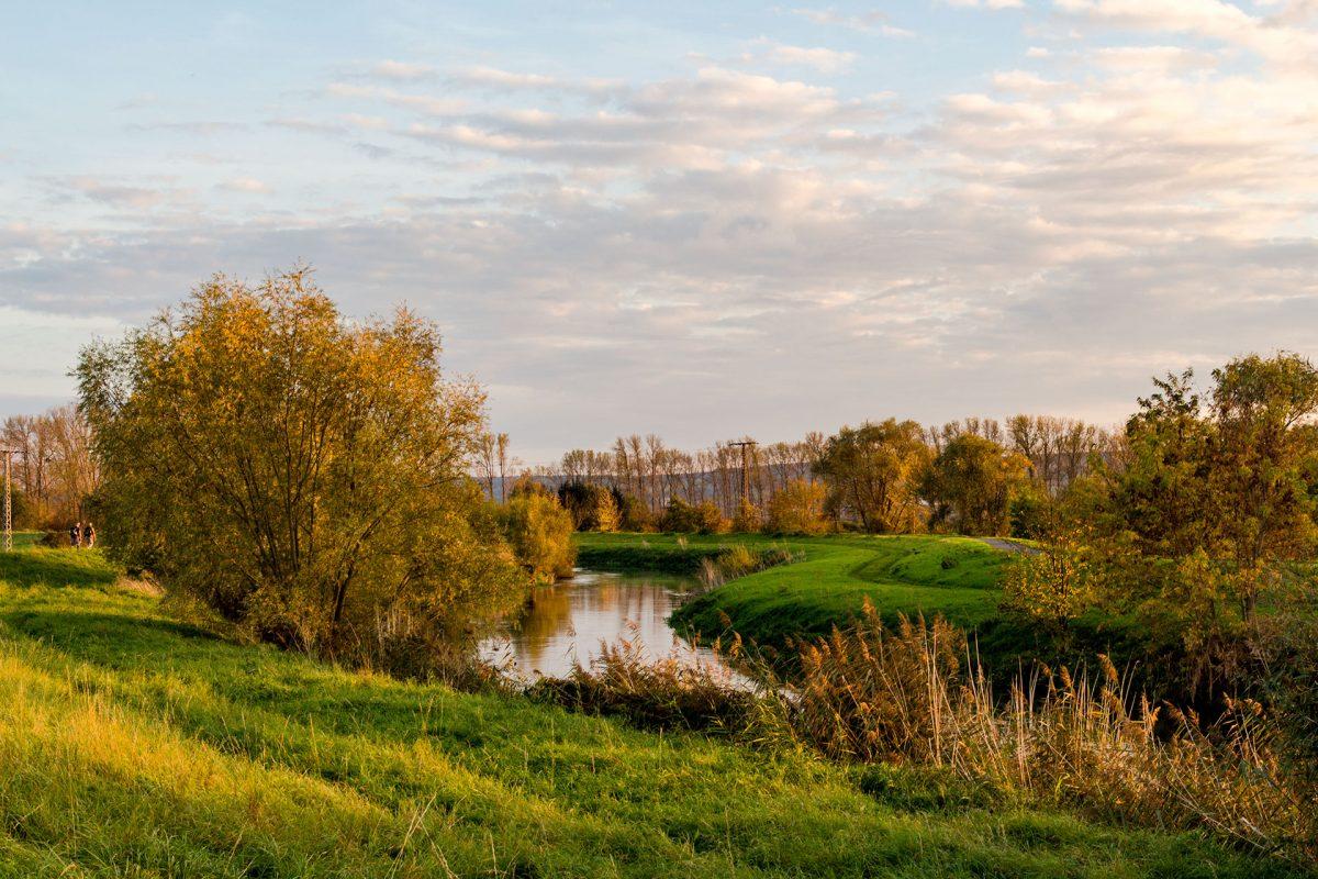Fluss-Biotope entlang der Ufer der Unstrut