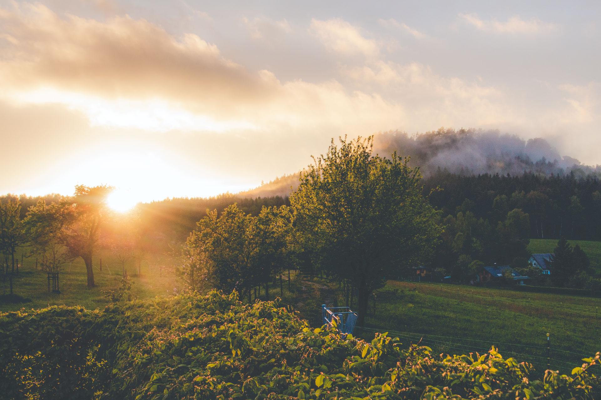 Bevor die Sonne ganz hinter dem Gohrisch versinkt heißt es schnell sein