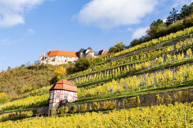 Schloss Neuenburg bei Freyburg weiß mit seiner fast 1.000-jährigen Geschichte in den Bann zu ziehen.