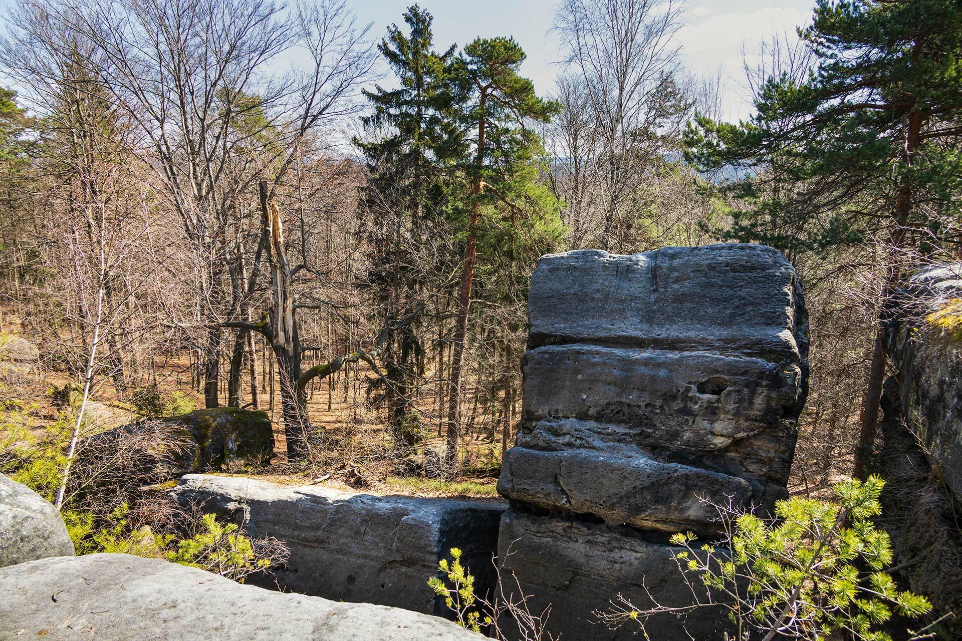 Oberhalb der Felsen, die ziemlich leicht zu erklettern sind, weht ein laues Lüftchen zwischen den noch kargen Bäumen