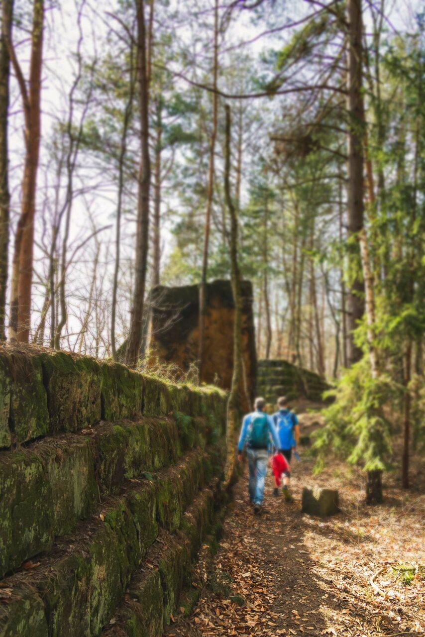Zurück nach Bad Schandau wandern über den Trampelpfad entlang der alten Steinbrüche