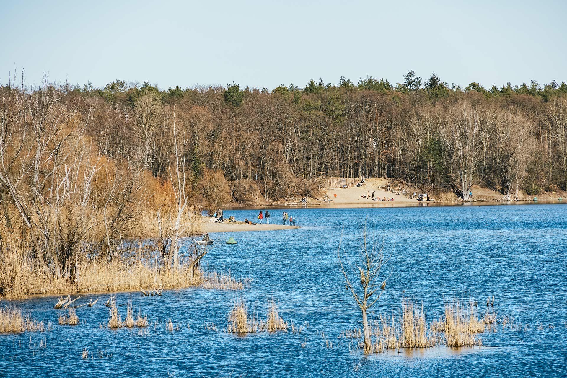 Der Flughafensee im Forst Jungfernheide lädt im Sommer zum Baden ein und an allen anderen Tagen zum Wandern oder Spazierengehen