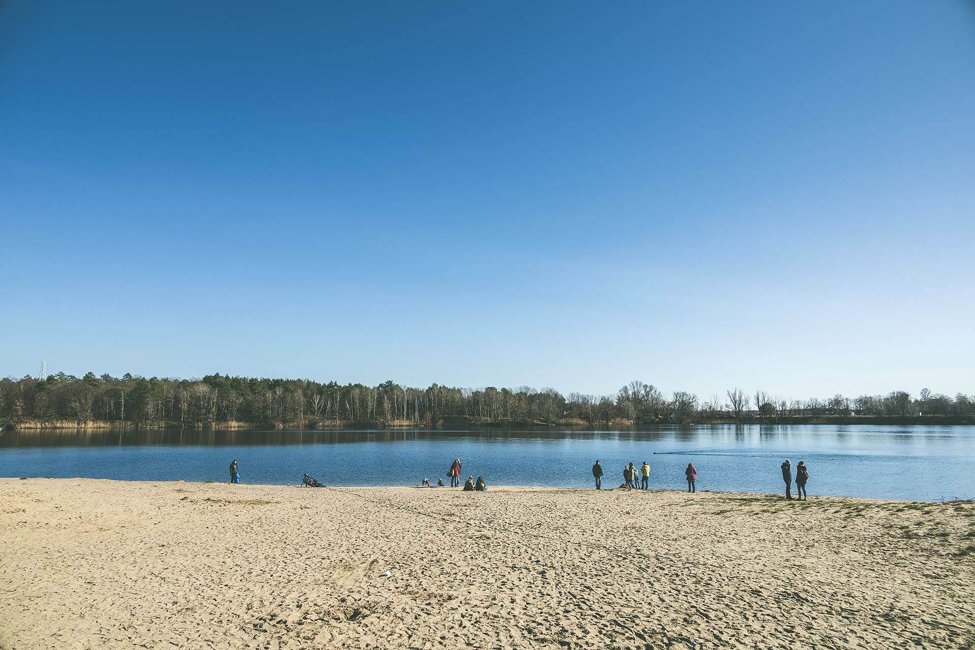 Die Vögel des Schutzgebiets lasen sich von zahlreichen Aussichtsplattformen am Flughafensee im Forst Jungfernheide beobachten.
